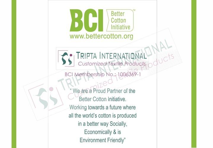 Tripta-Certificate5